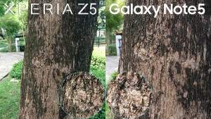 galaxy note 5 vs xperia z5 camera review 6