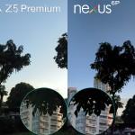 xperia z5 premium vs nexus 6p camera review comparison5