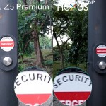 xperia z5 premium vs nexus 6p camera review comparison6