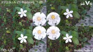 xperia z5 premium vs galaxy note 5 lg v10 nexus 6p4